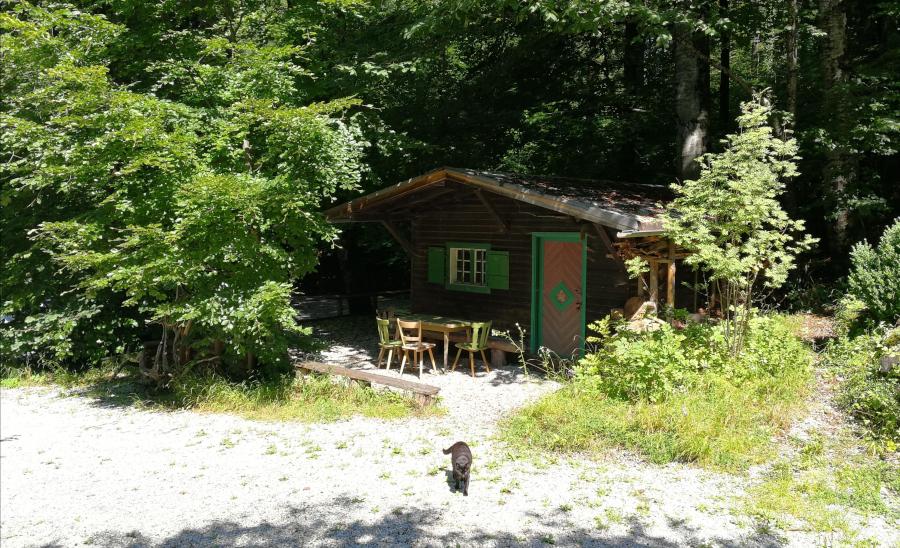 Coworking im Wald – bei www.projekt-draussen.com zu Gast